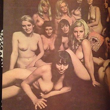 jimi hendrix rotily patrick vinyl collector