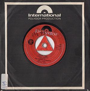 COLLECTOR HEY JOE/ hendrix rotily vinyl