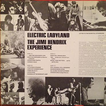 jimi hendrix vinyl album / electric ladyland