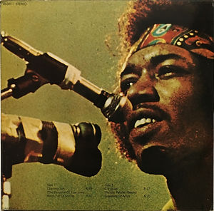jimi hendrix album vinyls/experience spanish 1971