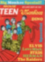 jimi hendrix magazines/movie teen illustrated february 1968