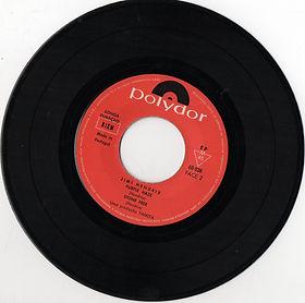 hendrix rotily patrick vinyl/ hey joe/purple haze