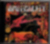 jimi hendrix rotily cd collector