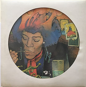 jimi hendrix bootlegs vinyls picture disc / are you experienced