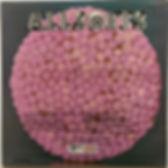 jimi hendrix vinyls/albums lps /allsorts ANISEED track records 1973
