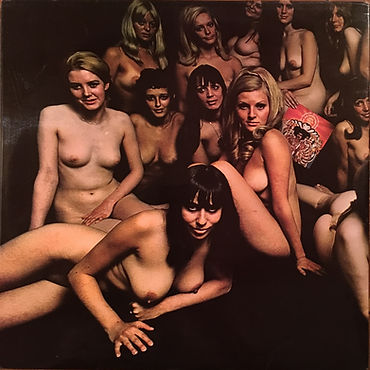 electric ladyland /jimi hendrix rotily vinyls/ collector