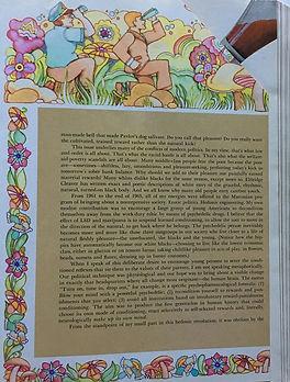 jimi hendrix magazines 1969/ playboy december 1969/timothy leary episode & postscript