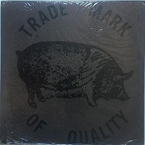 jimi hendrix vinyl bootleg album/pocahontas 2 lps