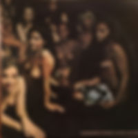 jimi hendrix rotily patrick vinyls collector/electric ladyland