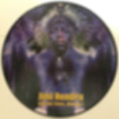 jim hendrix bootlegs lps albums vinyls/vol2 picture disc axis out take / radioactive records picture disc