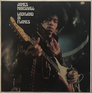 jimi hendrix collector vinyls bootlegs lp/  ladyland in flames color vinyl
