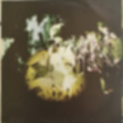 jimi hendrix vinyl album /expressway to your skull / buddy miles