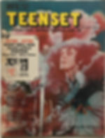 jimi hendrix magazine 1968/teenset january 1968
