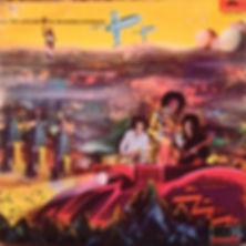 jimi hendrix rotily vinyls/electric ladyland vol 2