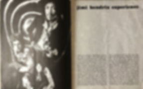 jimi hendrix memorabilia 1969/program royal albert hall 1969