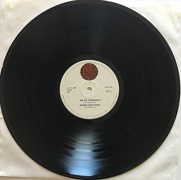 jimi hendrix bootlegs vinyls box lp/winterland days/ side d