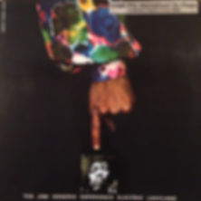 jimi hendrix rotily collector electric ladyland