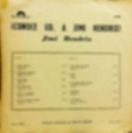 jimi hendrix vinyl album/are you experienced chile