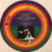 jimi hendrix collector vinyls records lp album/king & wonder sessions ho boy records 1994