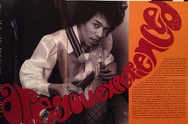 hendrix rotily vinyl collector family edition/are you experienced