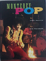 jimi hendrix collector rotily book