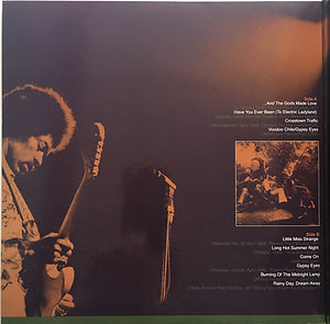 jimi hendrix vinyls albums bootlegs/alternate electric ladyland/the swingin'pig records color vinyl 2010