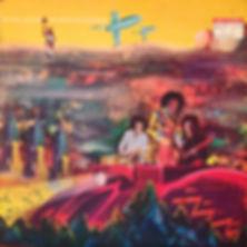 jimi hendrix collector vinyls rotily