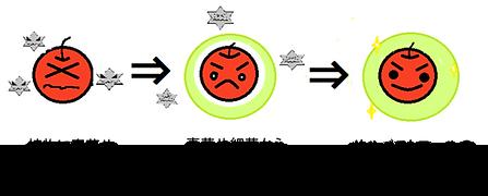 生成の図.png