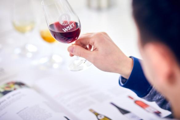 Systematisches Verkosten von Wein