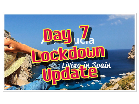 Lockdown Diary Day7