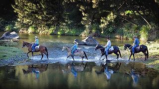 Queensland horse riding in Amamoor