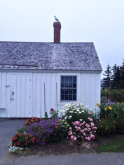 maine sailing  marshall point house.jpg