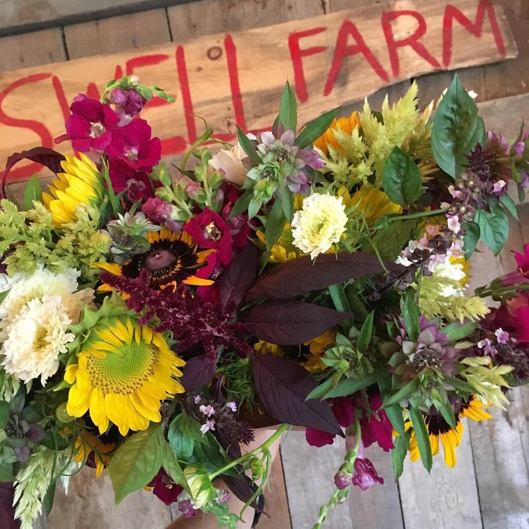 Swell Farm flower 3.jpg