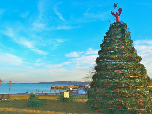Rockland maine christmas lobster tree.jp