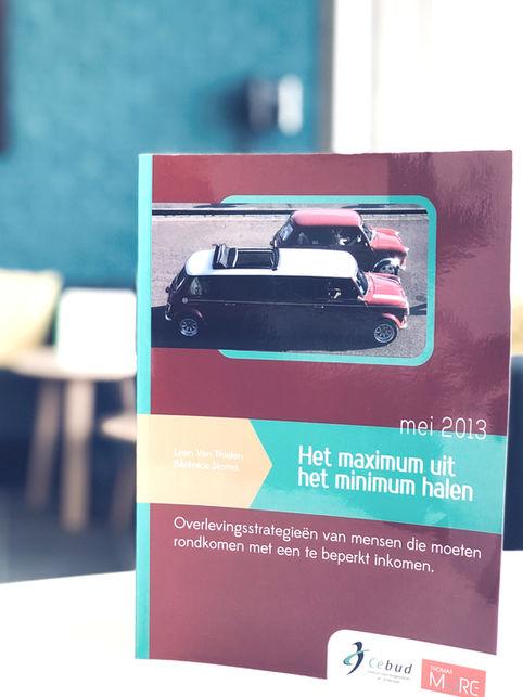 Boek: Het maximum uit het minimum halen
