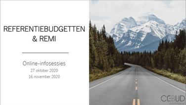 Presentatie: referentiebudgetten en REMI
