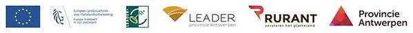 Banner leader.jpg