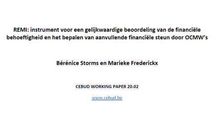 Working paper (NL)