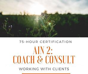 Coaching & Consulting.jpg