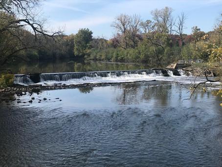 Restoring Salt Creek