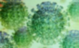 Coronavirus-Santander.png