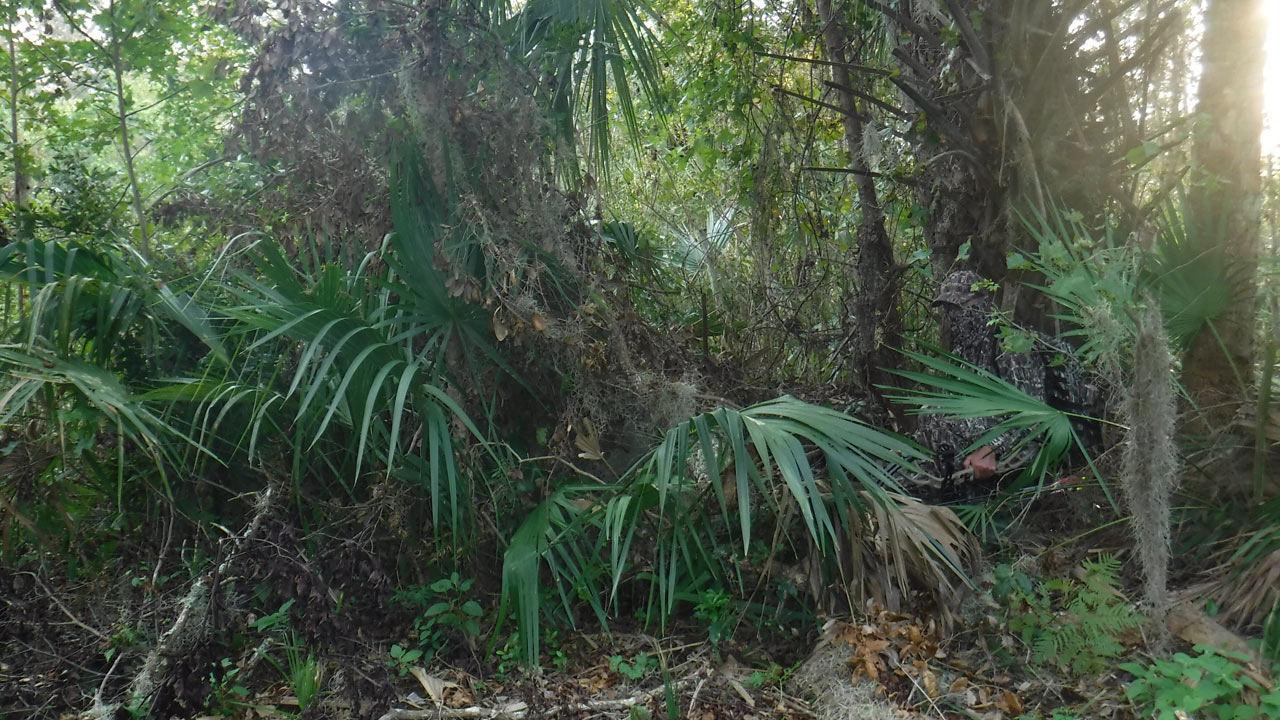 southern-camo-hunting.jpg