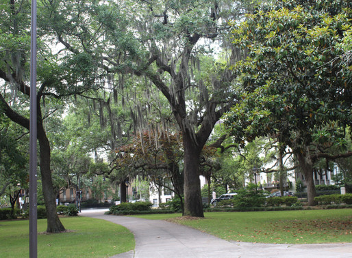 10 Things to Do and Eat in Savannah