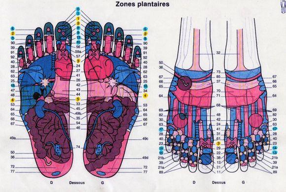 Séance de réflexologie plantaire
