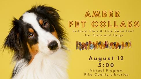 Amber Pet Collars