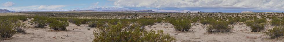 Joshua Tree Desert, California