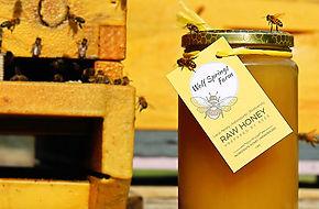 Honey Apiary.jpg