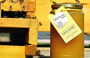 Honey Apiary_edited.jpg