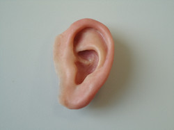 Life Like Ear Prosthesis