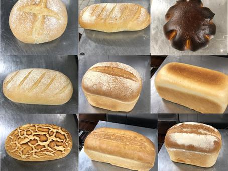 Infinite Bread Moment
